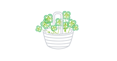 Illustration of clovers